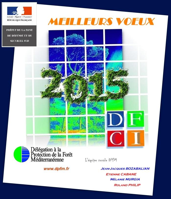 Carte Voeux DPFM 2015